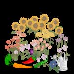 Urban-Gardening